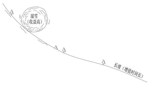 7.3.3 巴菲特的滚雪球理论